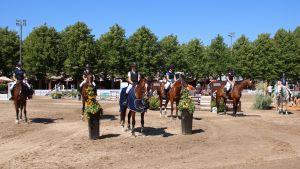 Hästar står uppradade vid en prisutdelning.