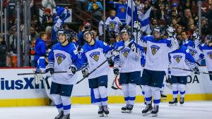Finland firar seger över Schweiz.