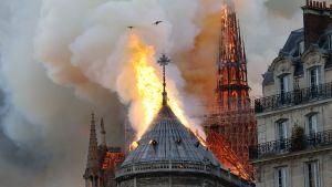 Notre Dame brinner i Paris.