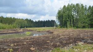 En blivande våtmark. Vattenfylld åkermark.