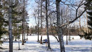 Park vid ån nedanför Rödsö gamla skola.