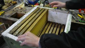 Carolina placerar ramarn med bivax i en bikupa gjord av styrox.