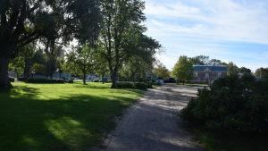 stallörsparken med träd och gräs.