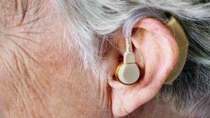 Öra med hörapparat