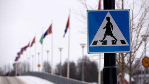 Trafikskylt vid övergångsställe i Umeå med samiska flaggor i bakgrunden