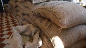 Säckar fyllda med kaffebönor