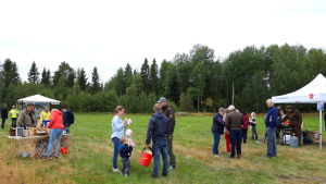 Tomtfestival på Fiskarholmen 2019.