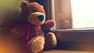 Nallebjörn på fönsterbräda