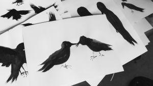 Tecknade svarta fåglar.