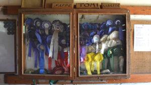 Prisrosetter rfån hästtävlingar