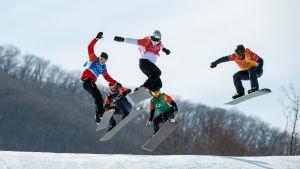 Snowboardcrossåkare i den andra semifinalen.