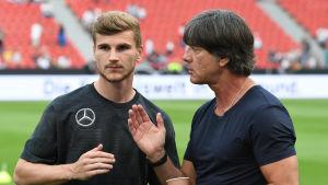 Förbundskapten Joachim Löw ger Timo Werner instruktioner i tränignsmatchen mot Saudiarabien.