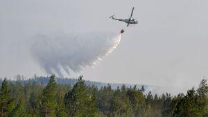 Brandmän släcker en bränd i Ljusdal från luften.