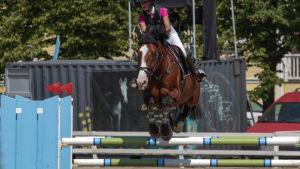 Häst hoppar över hinder.