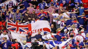 Brittiska hockeyfans firar mål.