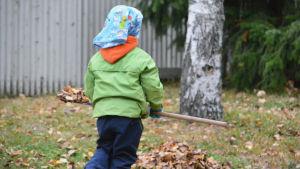 Ett barn med grön jacka och huckle fotat bakifrån. Barnet bär en kratta och i bildens bakgrund finns en löv.