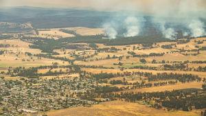Skogsbränderna hotar småstäder som Orbost i delstaten Victoria