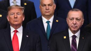 USA:s president Donald Trump tillsammans med Ungerns premiärminister och turkiets president Recep Tayyip Erdogan