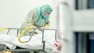 Person iklädd skyddmundering tar blodprov av person som ligger på en sjukhussäng.