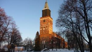 Åbo Domkyrka med julgranen 2010