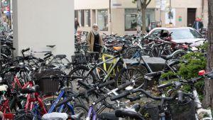Cyklar parkerade på gatan. Där det finns cyklar finns det studenter. Också för utländska studenter står cykeln högt upp på införskaffningslistan.