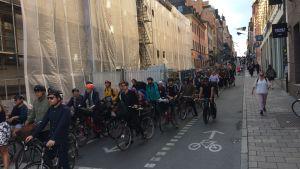 Närmare hundra cyklister i kö på Götgatan i Stockholm i morgonrusningen.