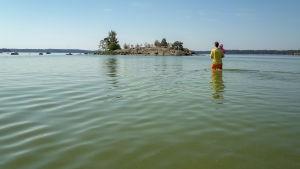 Sinilevää itä Helsingissä  Kalvik uimaranta
