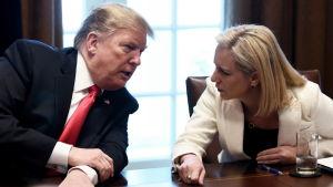 Trump och Nielsen i vad som verkar vara intensivt  samtal, lutade mot varandra vid konferensbord