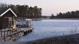 Brygga vid Tvärminne zoologiska station i Hangö.