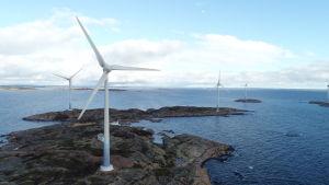 Ökad vindkraft ökar behovet av reglerkraft som vattenkraft.