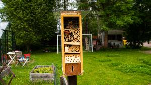 Insekthotell, en trälåda med olika rör av naturmaterial i.