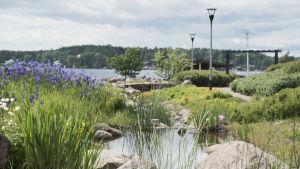 Puistonäkymä kukkineen, pensaineen, kävelypolkuineen ja merinäköaloineen.
