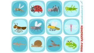 Pikku Kakkosen kommunikaatikortit hyönteiset