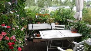 Ett vitt bord ute bland många växter.