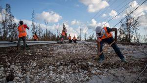 Arbetare röjer en skadad väg.