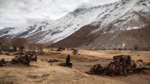 PJ Harvey palaneiden autonromujen ympäröimänä vuoristomaisemassa