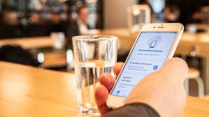 En person håller en telefon i handen och har öppnat Coronablinkern- appen.