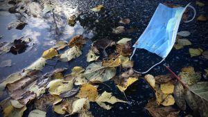Kasvomaski maassa syksyn lehtien seassa.