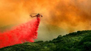 Markbränder släcks med helikopter i Santa Barbara i Kalifornien.