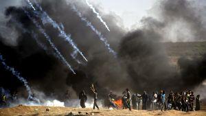 Tårgasgranater faller ner över demonstranter i närheten av gränsstängslet.