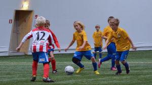 Juniorer spelar fotboll i allaktivitetshallen i Ingå.