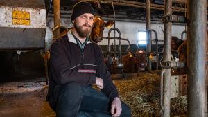 En jordbrukare sitter på huk, bakom honom skymtar en ko