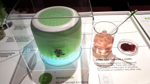 bioreaktori