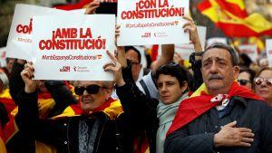 """Demonstranter iklädda Spaniens flagga håller upp skyltar med texten """"med konstitutionen"""" ."""