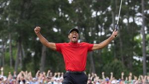 Tiger Woods jublar.
