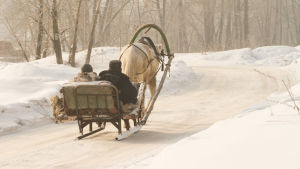 häst och släde i ett vinterlandskap. Två mycket påbyltade männsikor sitter i släden, med ryggen mot kameran.