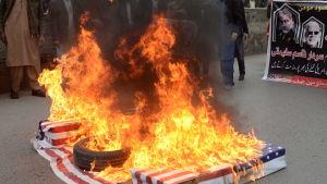 Pakistanska shiamuslimer i Islamabad, Pakistan, bränner USA:s flagga bränns 3.1.2020