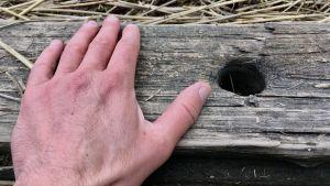 En hand håller i en träplanka.