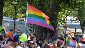 närbild på regnbågsflaggan.