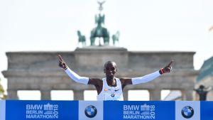 Eliud Kipchoge löper världsrekord.